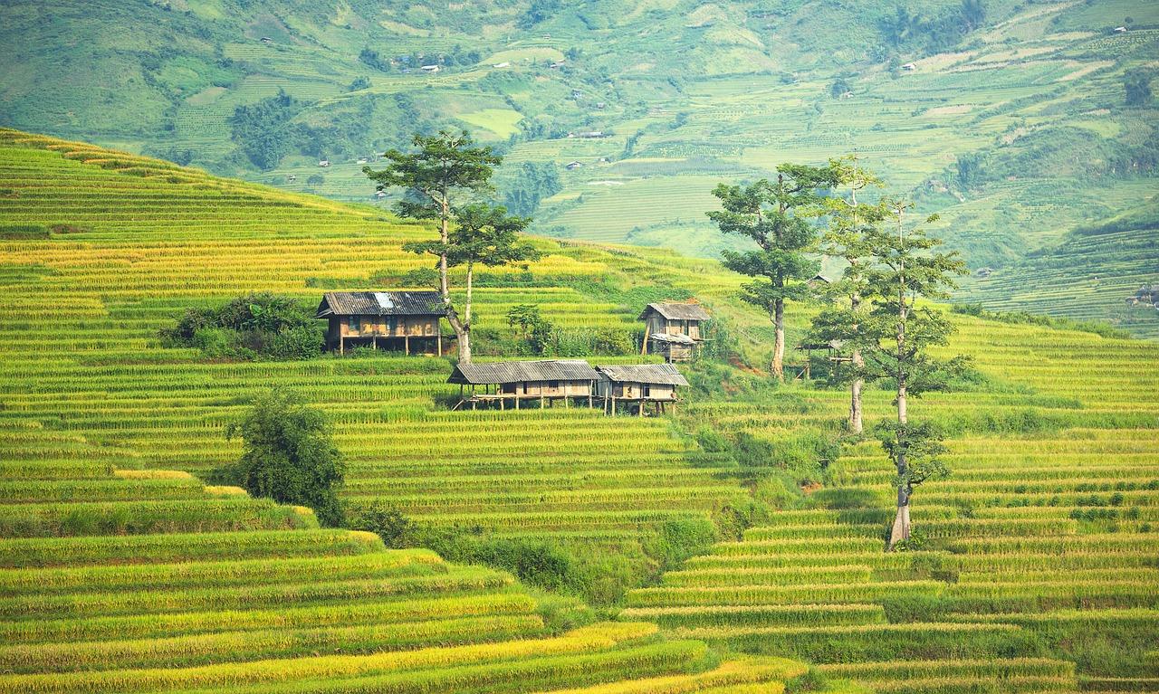 Kombireisen Malaysia - Malaysia Reisen Bild 3