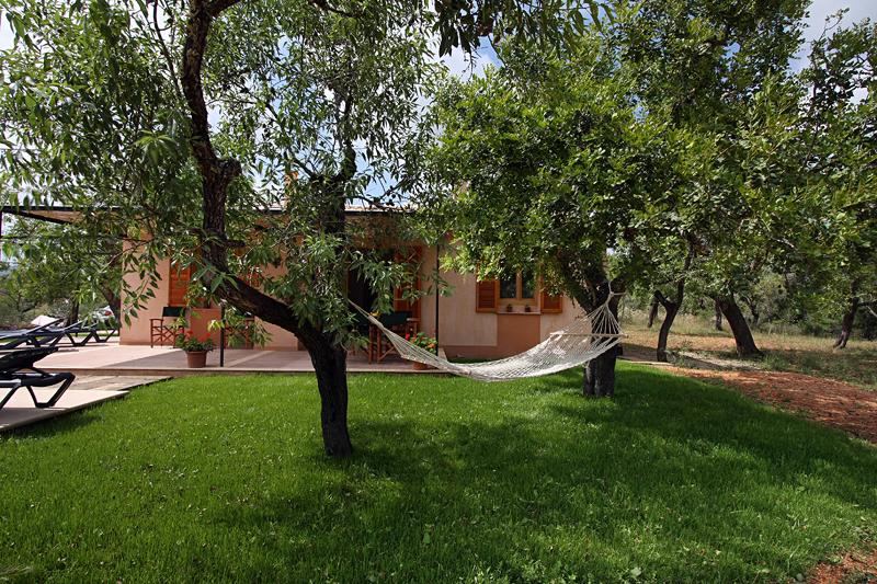 Stilvolles haus in ruhiger lage mieten afandi for Arboles de jardin que den sombra